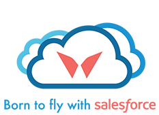 Born to fly with Salesforce