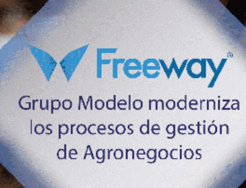 Grupo Modelo alinea sus procesos a nivel internacional con Salesforce y Freeway Consulting